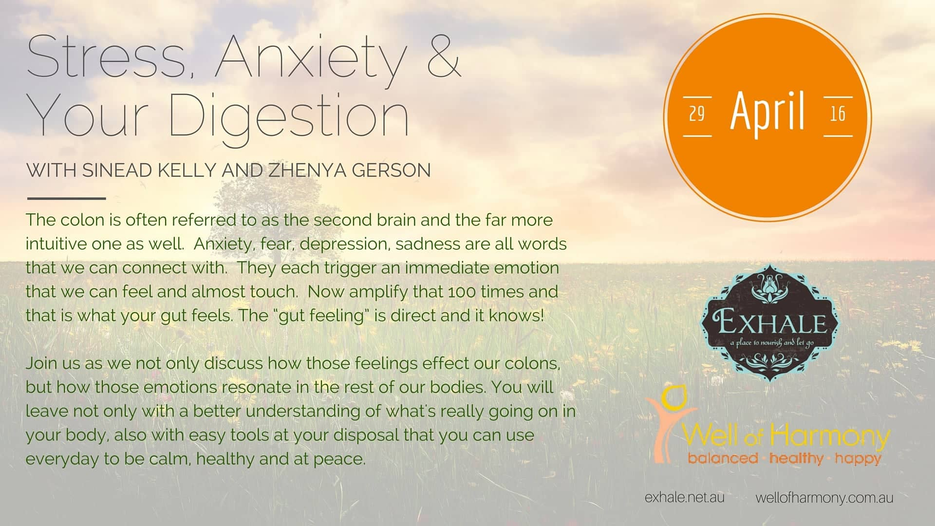 Stress Anxiety and your Digestion Workshop